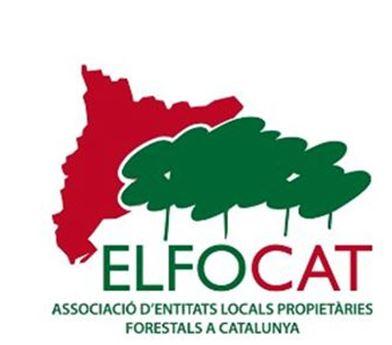 logo4_elfocat